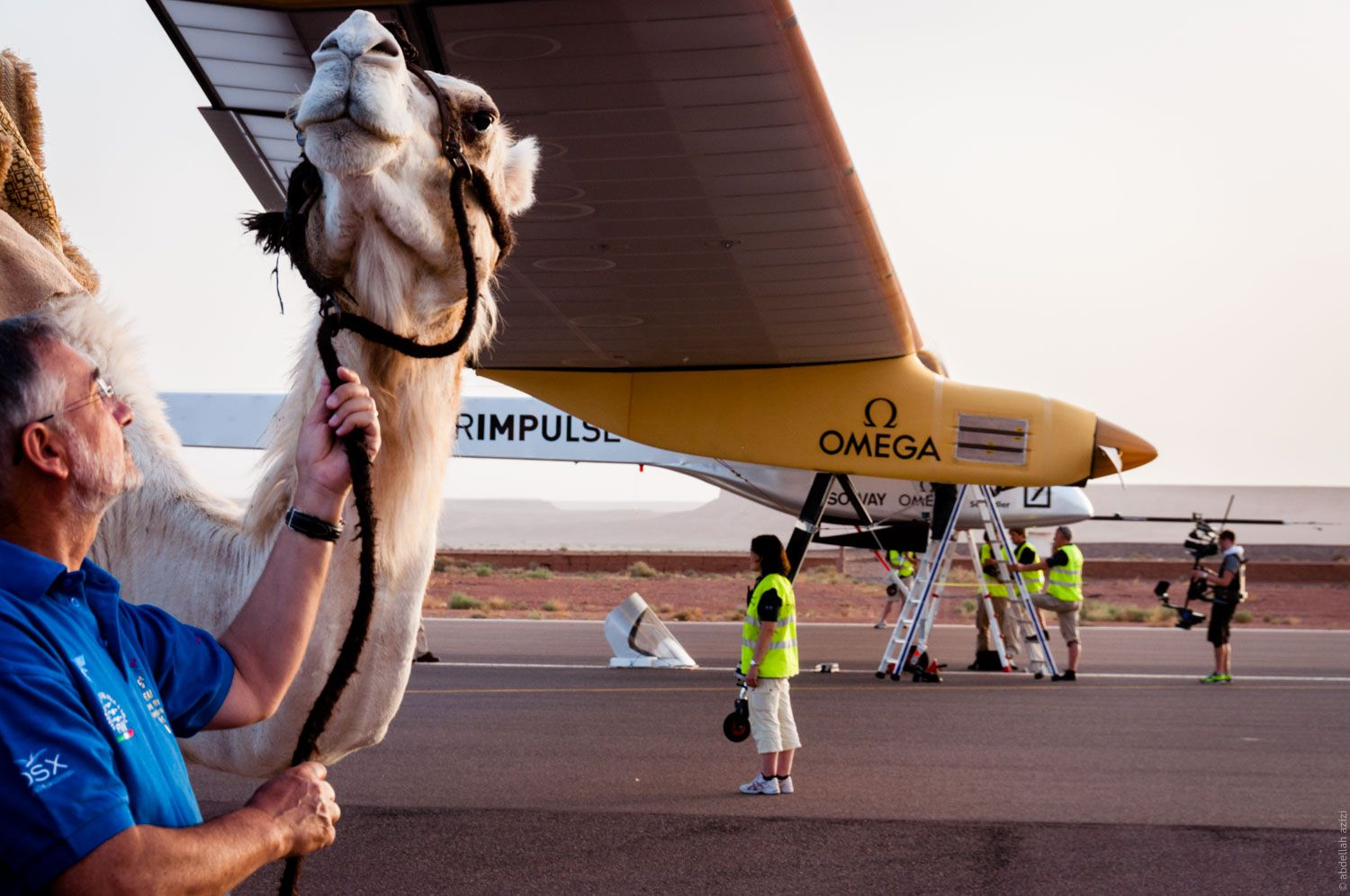 Camel and Solar Impulse in Ouarzazate