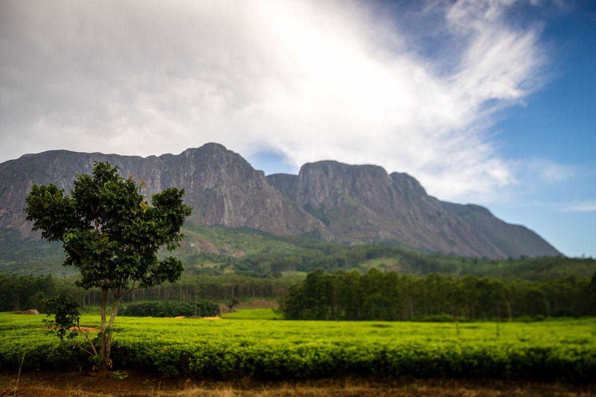 mulanje-malawi-by-abdellah-azizi