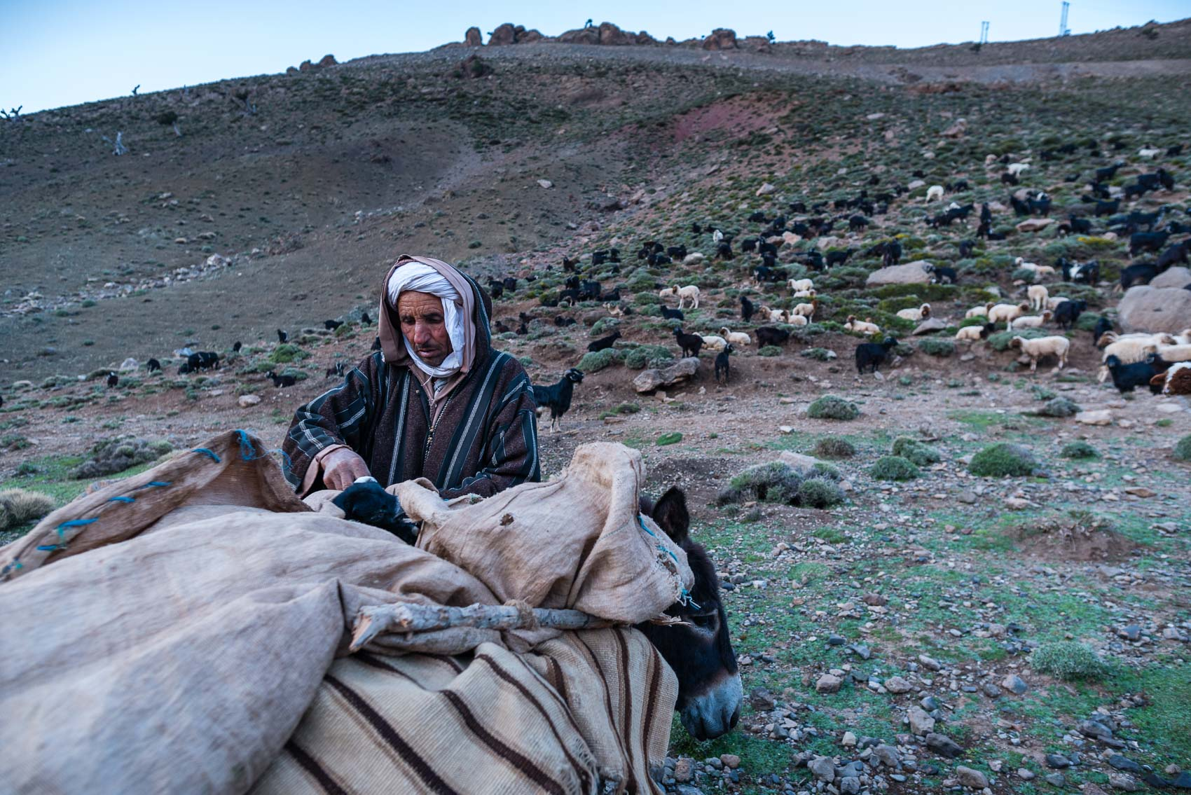Hmad, Ait Atta nomads, Morocco